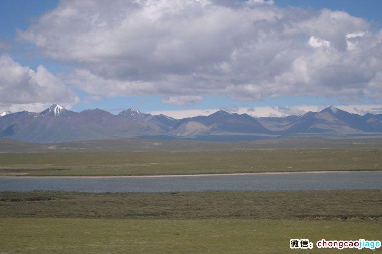 那曲县的草原和河流图片