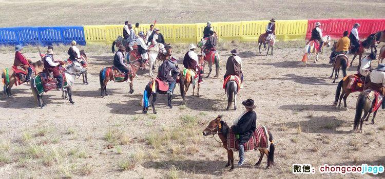 参加赛马比赛的藏族骑手们