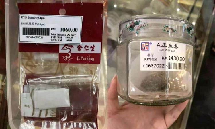 马来西亚豪猪枣价格