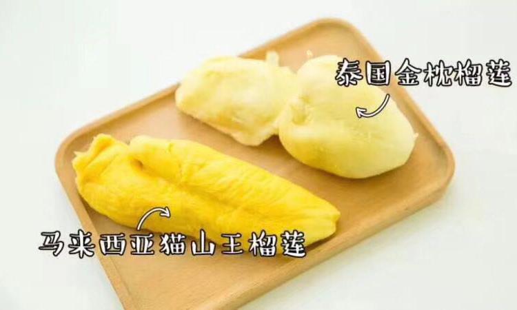 猫山王榴莲和金枕榴莲果肉区别图片