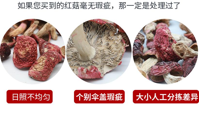野生红菇特征图片